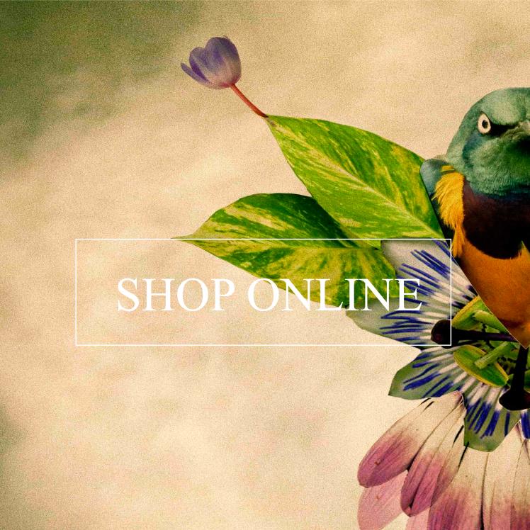 SHOPONLINE_WP